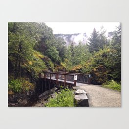 Alaskan Path Canvas Print