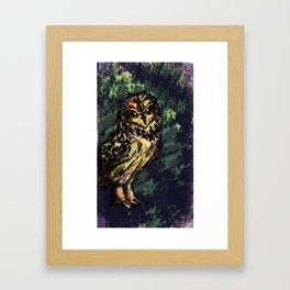 Short-Earred Owl Framed Art Print