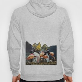 Flamingos In a Mountainous Metropolis Hoody