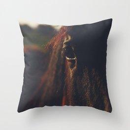 Horse photography, high quality, nature landscape fine art print Throw Pillow