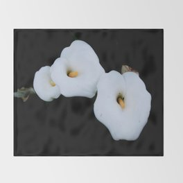 Three Calla Lilies Isolated On A Black Background Throw Blanket