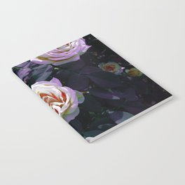Gradient Rose Notebook
