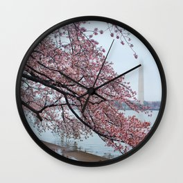 Cherry Blossum Test Wall Clock