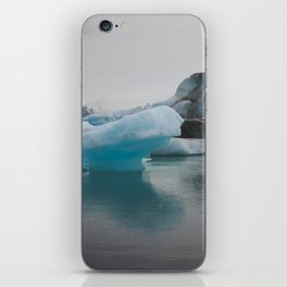 Just the Tip of the Iceberg iPhone Skin