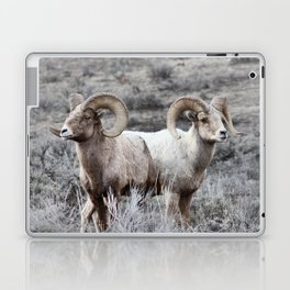 The Alchemy of Two Laptop & iPad Skin