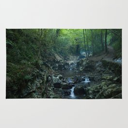 Nature photography. Zugarramurdi Cavern, Navarra, Spain.  Rug