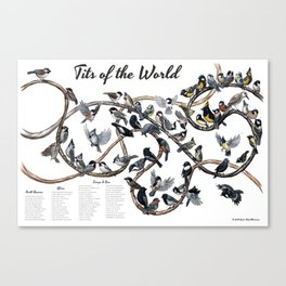 Tits of the World Canvas Print