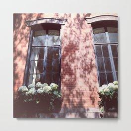 Brownstone + Hydrangeas Metal Print