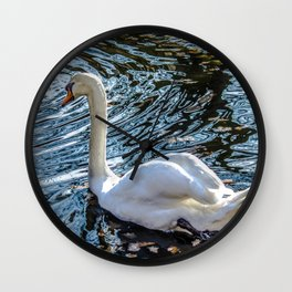 White swan with black feet Wall Clock