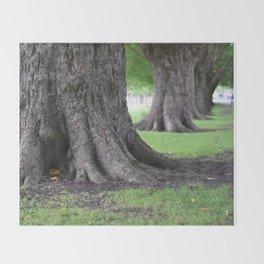 Cambridge tree 4 Throw Blanket