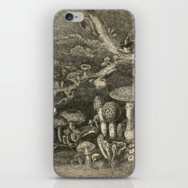 Mushrooms and Toadstools iPhone Skin