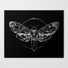 Death's-head Hawkmoth Canvas Print