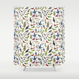 Endangered Birds Around the World Shower Curtain