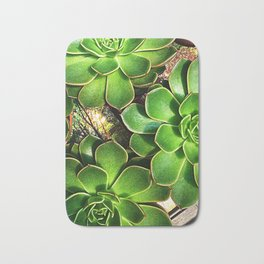 3 Succulents Bath Mat