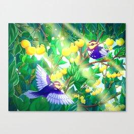 The seasons | Summer birds Canvas Print