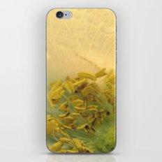 Golden Center iPhone & iPod Skin