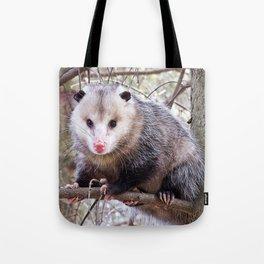 Possum Staredown Tote Bag