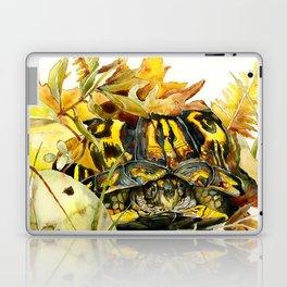 Eastern Box Turtle Laptop & iPad Skin