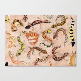 Leopard Gecko Lizard Morphs Canvas Print