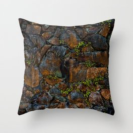 Mother of Thousands Throw Pillow