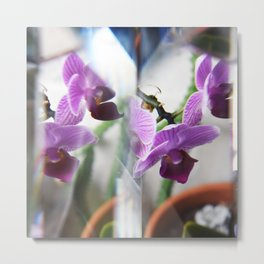 Orchid Light Metal Print