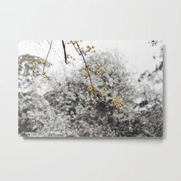 Winter Whites Metal Print