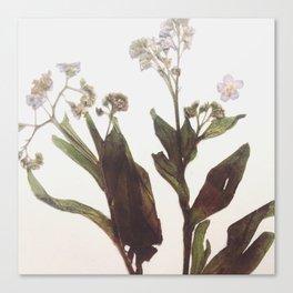 Leaf & Floral Canvas Print