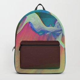 NTDDYDT Backpack
