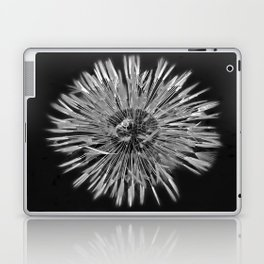 05.26.13 raindrop dandelion  Laptop & iPad Skin