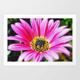 Purple Spring Flower Art Print