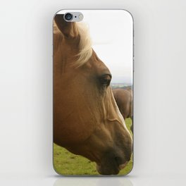 Horses in a Field iPhone Skin