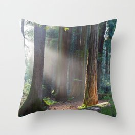 Keepers Of The Light Throw Pillow