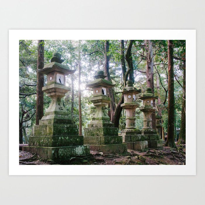 Nara Park Fine Art Print  • Travel Photography • Wall Art Art Print