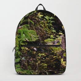 Cameron Falls 2 Backpack