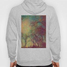 Tree Silhouette, Autumn Sunset Hoody