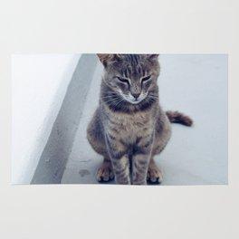 kitty in the island Rug