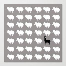 Don't be a sheep, Be a Llama Canvas Print
