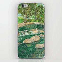 Copeland iPhone Skin