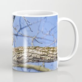 Squirrel in Nature Coffee Mug