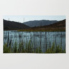 Lake Hodges, CA Rug