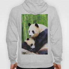 Panda-love Hoody