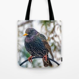 European Starling Tote Bag