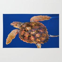 Loggerhead sea turtle Rug