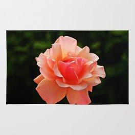 Pink Rose Blooming Rug