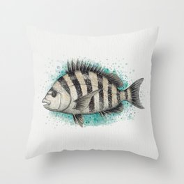 """Sheepshead Splash"" by Amber Marine ~ Watercolor Fish Painting (Copyright 2016) Throw Pillow"