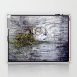 Eye of the Barn Laptop & iPad Skin