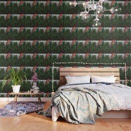 WLDLFTRL, FL Wallpaper