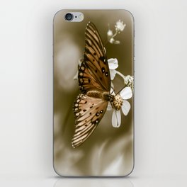 Monarch Butterfly  iPhone Skin