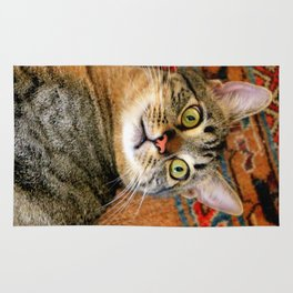 I'm Ready For My Close-up... Rug