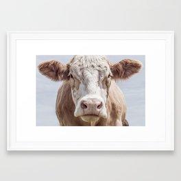 Cow Portrait Colour   Minimalism Framed Art Print